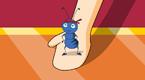 神奇的蚂蚁