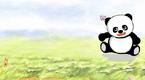 熊猫波波(1)
