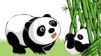 熊猫波波(2)