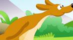 Kangaroos Go Skip,Skip,Hop