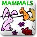 哺乳动物涂色