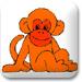 可爱的小猴