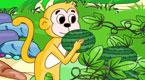 小猴吃瓜果