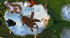 飞上天空的绵羊