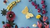 花丛里的蝴蝶