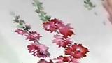 漂亮的花卉