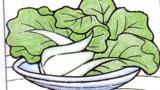 营养的小青菜