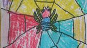 可爱的小蜘蛛