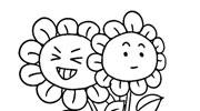 灿烂的太阳花