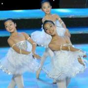 少儿基础舞蹈训练教程视频