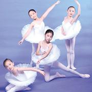 芭蕾舞蹈形体训练视频