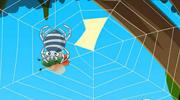 蜘蛛和蜘蛛网