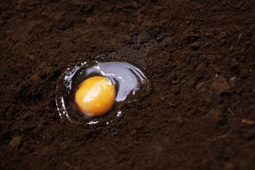 增强宝宝记忆力――蛋黄