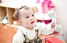 早期教育   全语言教育会让宝宝早说话