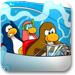 企鹅的赛艇