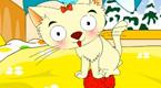 小猫咪的毛绒球