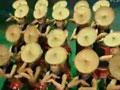 少数民族舞蹈大全6