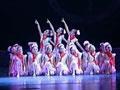 第六届华北五省少儿舞蹈比赛33
