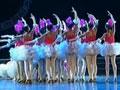 第六届华北五省少儿舞蹈比赛29