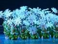 第六届华北五省少儿舞蹈比赛42