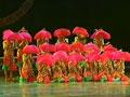 第六届华北五省少儿舞蹈比赛49