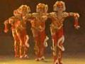 第五届小荷风采儿童舞蹈大赛9