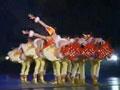 第五届小荷风采儿童舞蹈大赛47