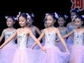 河南电视台少儿艺术团第三届快乐舞蹈节13