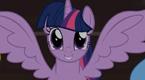 紫悦有翅膀后的生活