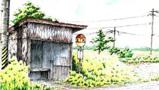 小屋前油菜花开