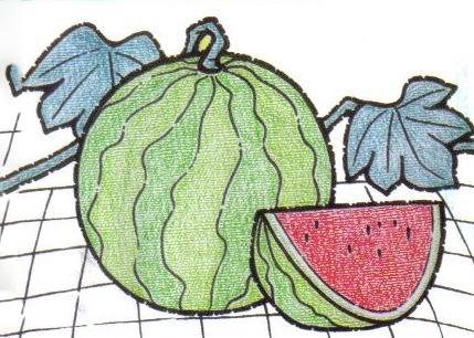 美味的西瓜啦,朋友们,现在就让我们一起来看看关于习惯的彩色铅笔画吧