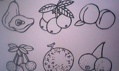 儿童手绘水果图画大全