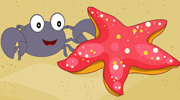 小蟹子的故事