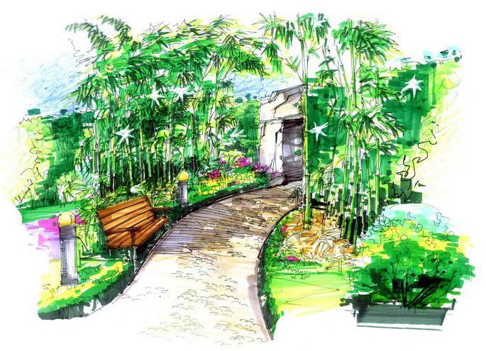 手绘竹林平面图