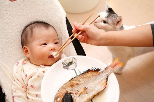 婴儿缺乏维生素b的症状 皮肤会变得干涩
