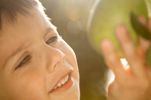 宝宝秋季宜吃的水果
