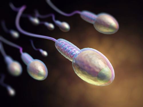 吃精液能不能美容