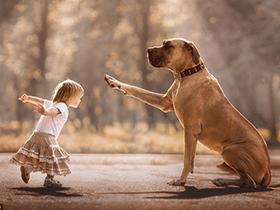 摄影师拍摄小孩与大汪