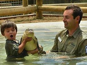 与野生动物一起过的童
