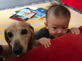 张梓琳怀抱女儿与宠物