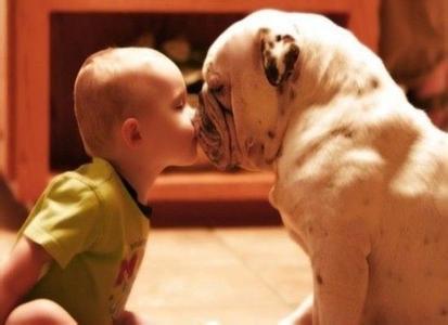 如何教宝宝学动物叫