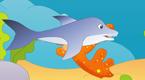 金枪鱼和海豚